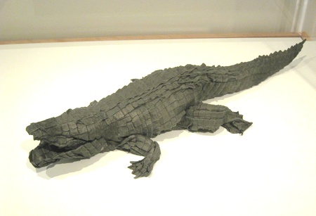 American Alligator, 2006