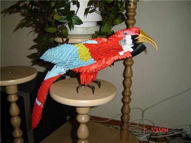 Костюм попугая своими руками