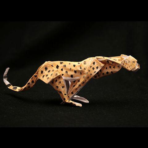 Бегущий гепард - Работы
